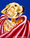 Super Bear - Super Hero Golden Retriever