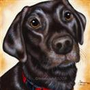 Toby - Chocolate Labrador Retriever Painting