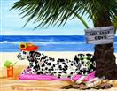 Hot Spot Cove - Dalmatian Dog Beach Painting