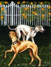 Rose Garden Frolic ll - Greyhound Dog Painting