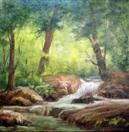 Wooded Stream Landscape