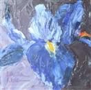 Indigo Iris, palette knife oil painting