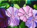 More Morning Glories from Half Moon Bay, painting on glass