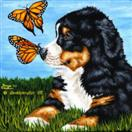 Little Miracles #2 - Bernese Mountain Dog Art