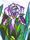 'The Four Irises:  Part One', painting on glass
