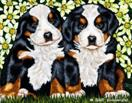 Daily Painting #206 - Daisy Delight - Bernese Mountain Dog Art