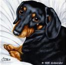 Daily Painting #207 - Little Bit 'O Licorice - Dachshund Dog Art
