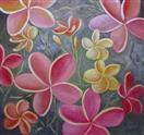 Plumeria  in oils Barbara Haviland