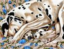 Bed of Roses - Dalmatian Dog Art