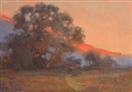 Mountain Light oil study by BECKY JOY