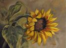 Sunflower Nod
