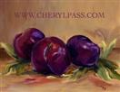 Painted Plums Postcard