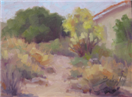 plein air on a cloudy day in Phoenix by BECKY JOY