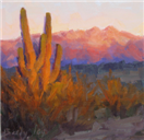 Four Peaks Desert Sunset by BECKY JOY