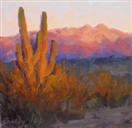 Four Peaks Desert Sunset by BECKY JOY